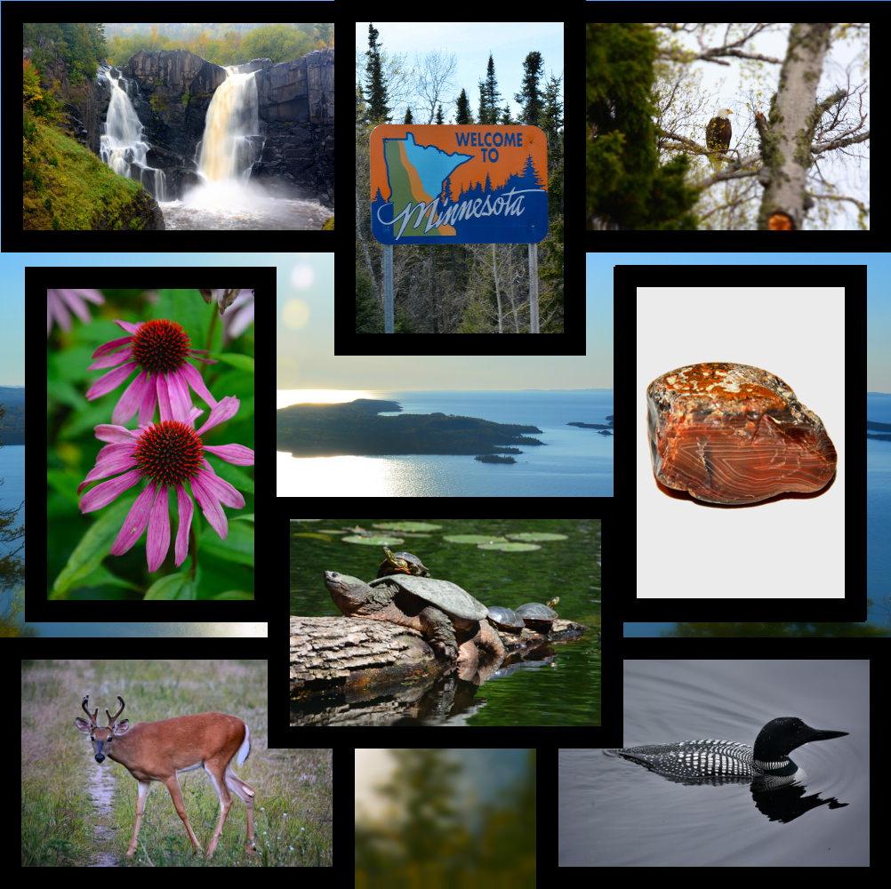Mn Sights Collage of pictures