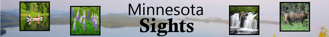 Minnesota Sights Banner